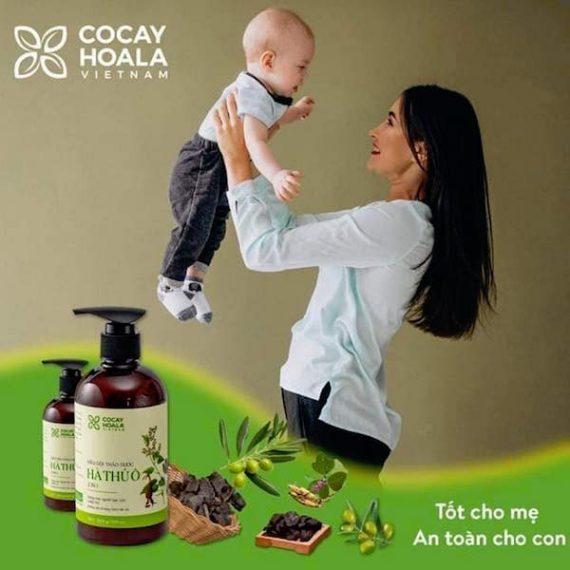 dầu gội hà thủ ô an toàn cho mẹ và bé